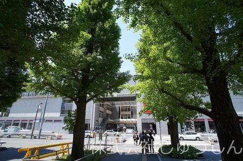日吉の慶応大学側から駅を撮影。賃貸のお申し込み時に必要な書類とは?