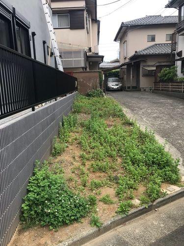 夏に向けて雑草が伸びてしまいます。高齢になるとその作業は大変です。