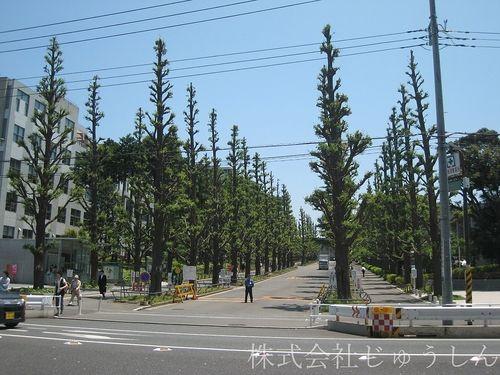 一般入試合格発表【慶應大学】 港北区日吉の賃貸スタッフの話